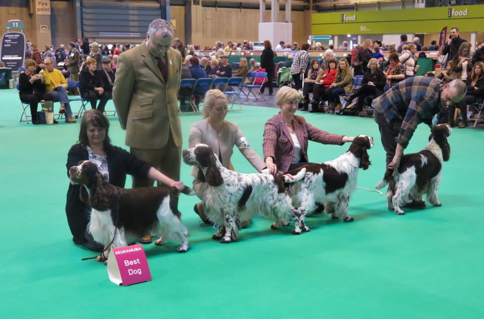 Rafferty crufts 3